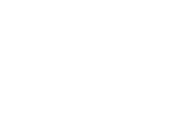 web-møte2